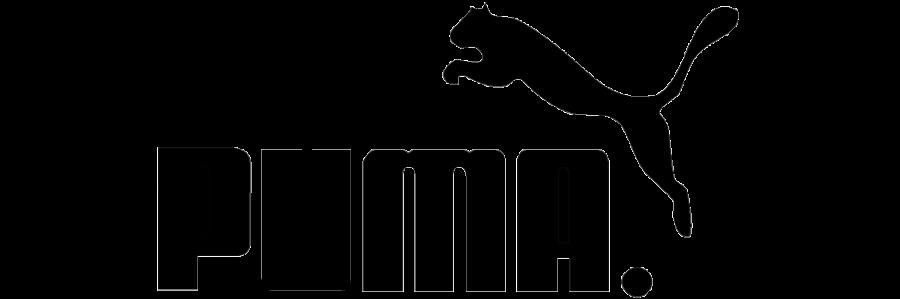 puma-1599651852508_20150910102858